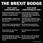 The Brexit Bodge: What they said