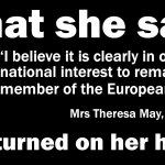 Mrs May: Acting against the national interest?