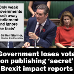 Government loses vote on secret Brexit reports