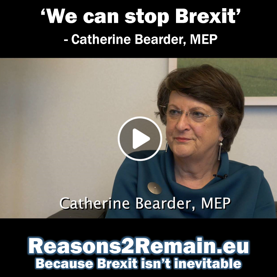 'We can stop Brexit' – Catherine Bearder, MEP