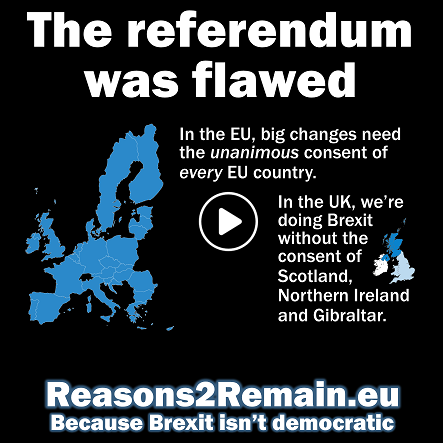 The EU referendum was flawed