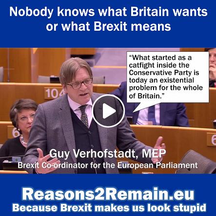 Brexit makes us look stupid
