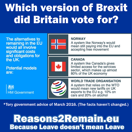 Which version of Brexit did Britain vote for?